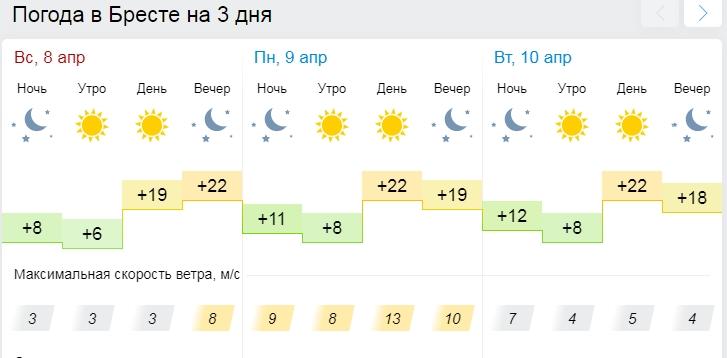 До 24 градусов тепла прогнозируется 9 апреля по юго-западу Беларуси