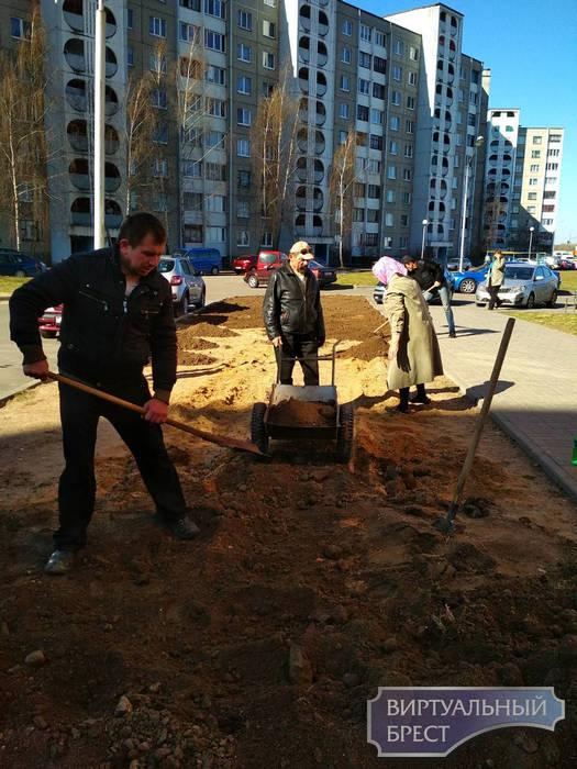 В Московском районе продолжается наведение порядка на территории