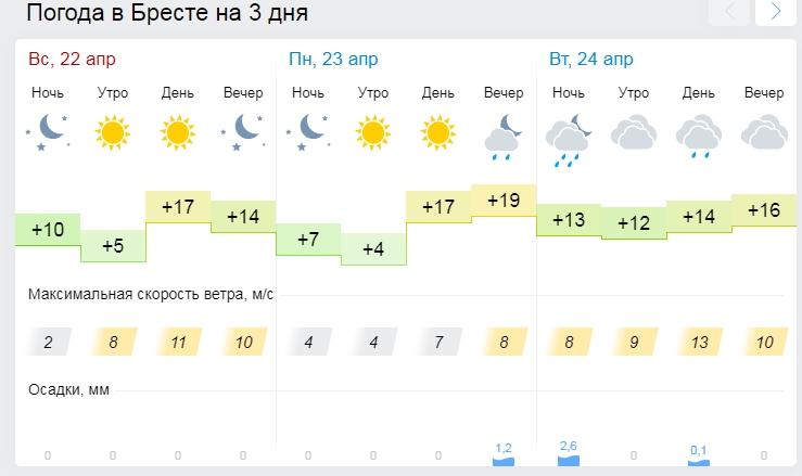 Ветер до 27 м/с. Из-за непогоды в Беларуси пострадали 15 населенных пунктов