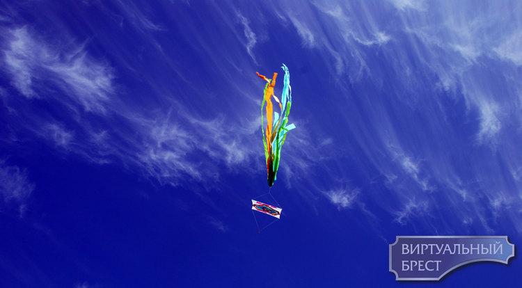 В Бресте провели фестиваль воздушных змеев. Посмотрите, какая красота!