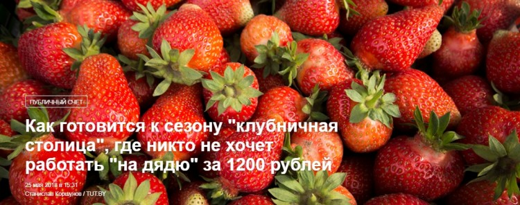 """Как готовится к сезону """"клубничная столица"""", где никто не хочет работать за 1200 рублей"""