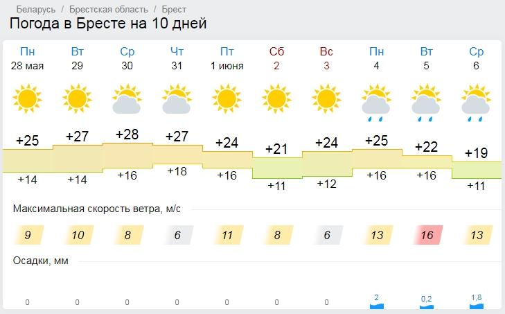 К концу недели похолодает. Погода на Брестчине в начале лета