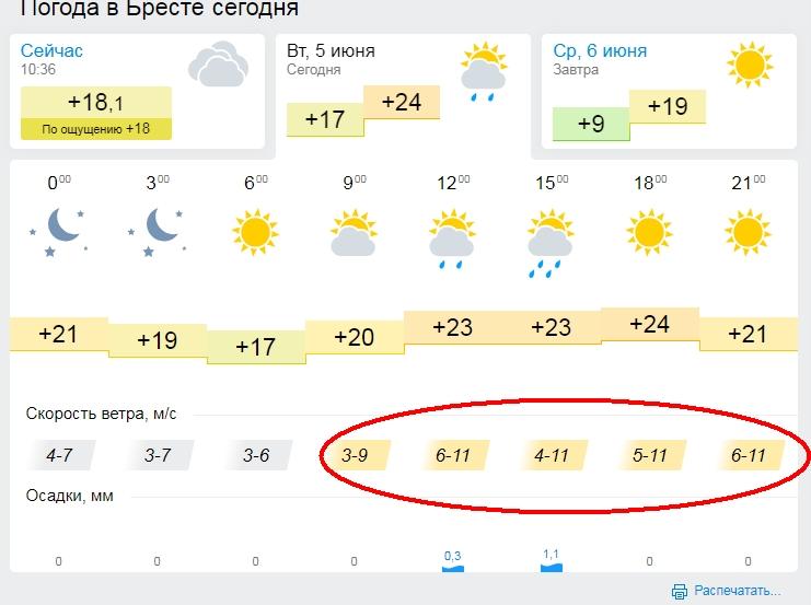 Оранжевый уровень опасности объявлен в Беларуси 5 июня из-за порывистого ветра и гроз