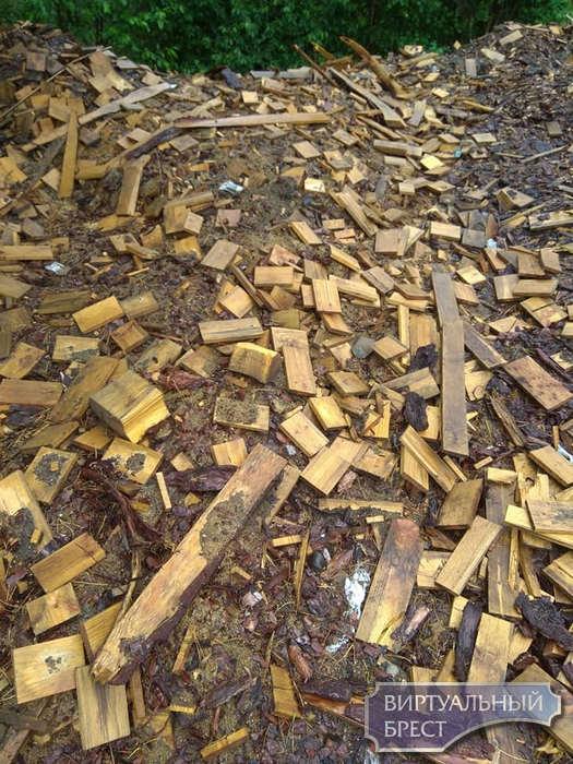 В Беловежской пуще древесные отходы закапывают в землю? Отдайте лучше людям!