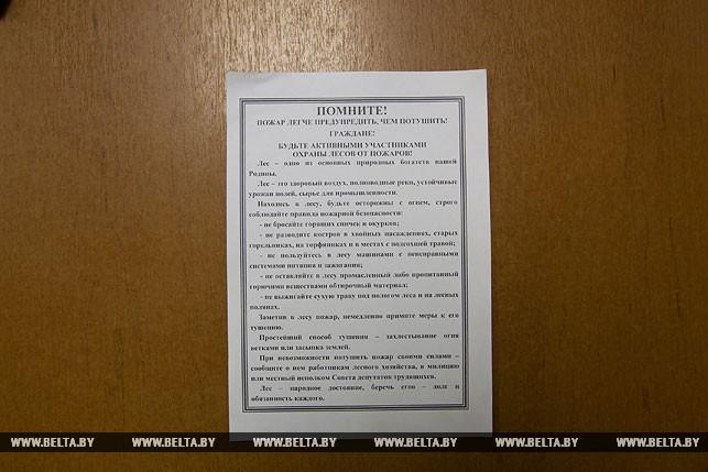 Посторонним вход запрещен: из-за жары леса Брестской области взяты под усиленную охрану