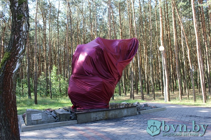 Повреждения, причинённые памятнику в парке воинов-интернационалистов значительные