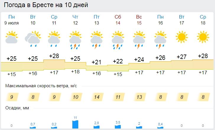 Начало недели в Бресте будет теплым, в пятницу — ненастье
