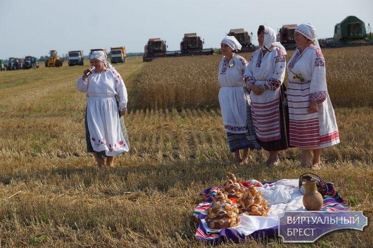 Красивый обряд Дожинки провели в связи с окончанием уборки урожая на Жабинковщине