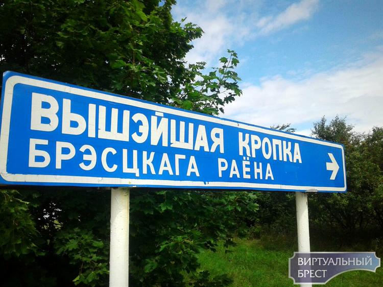 Что видно с самой высокой точки Брестского района?