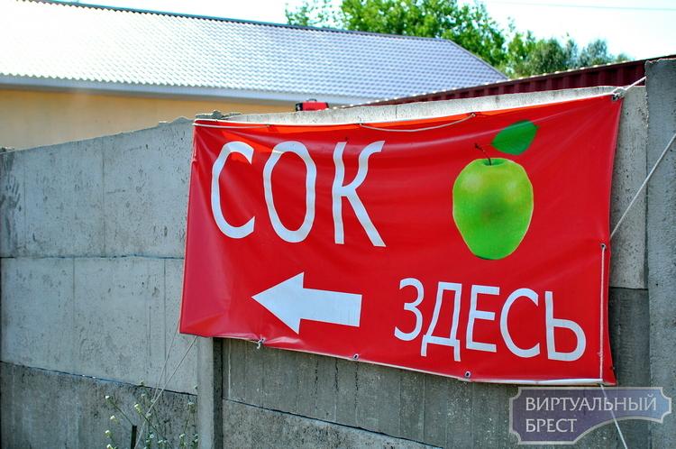 «Сок здесь!»: ищем самую дешевую давильню яблок (и не только их) в Бресте