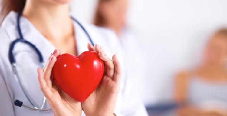 Брестчан будут консультировать по вопросам болезни сердца и сосудов
