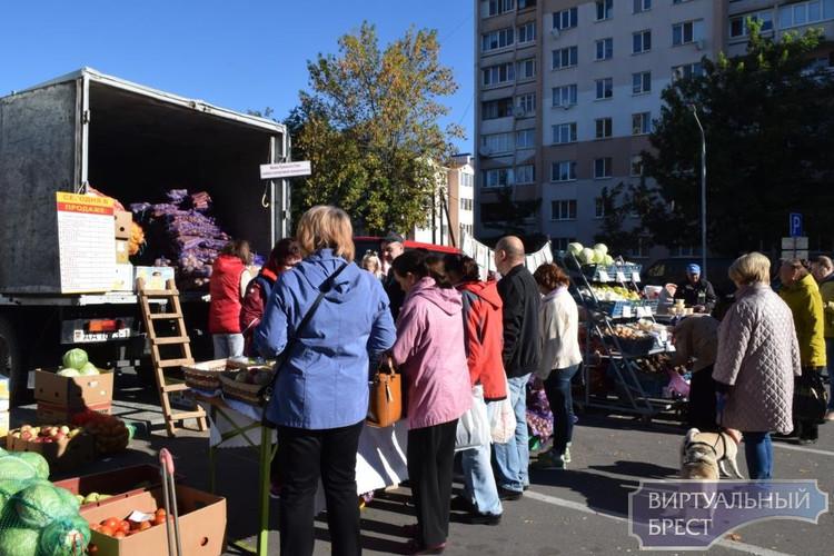 Ярмарочный сезон открыт в Бресте - какие цены и чем торгуют?
