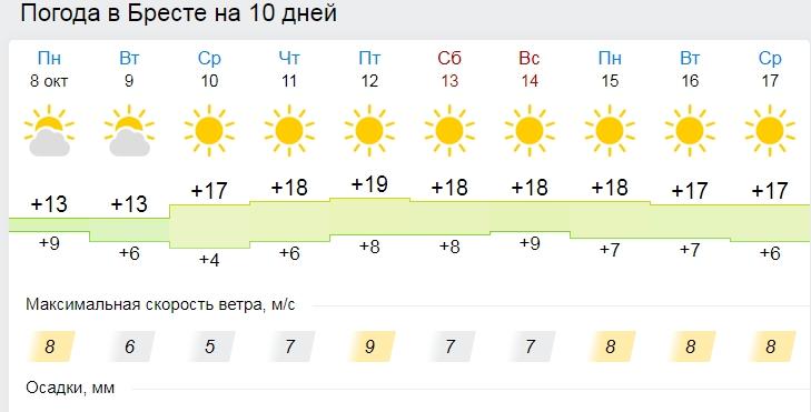 Солнечно и без осадков: бабье лето на неделю придет в Беларусь