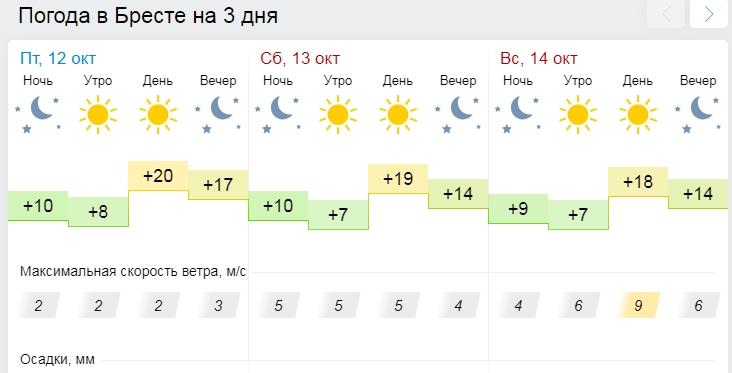В выходные снова будет тепло: до +20°С и без осадков