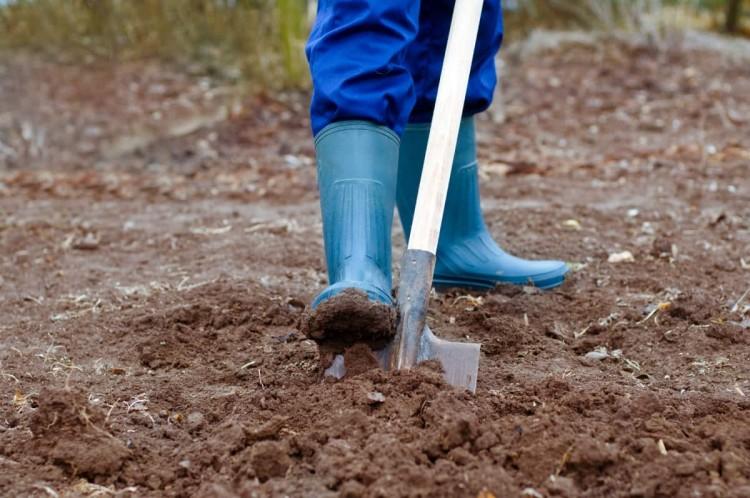 В Лунинце мужчина при строительстве дома выкопал мину