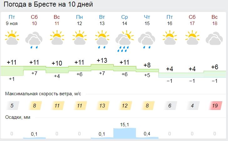Погода в выходные: в субботу — туман, с воскресенья — кратковременные дожди и мокрый снег