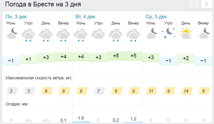 Дожди и мокрый снег ожидаются в Беларуси 4 декабря