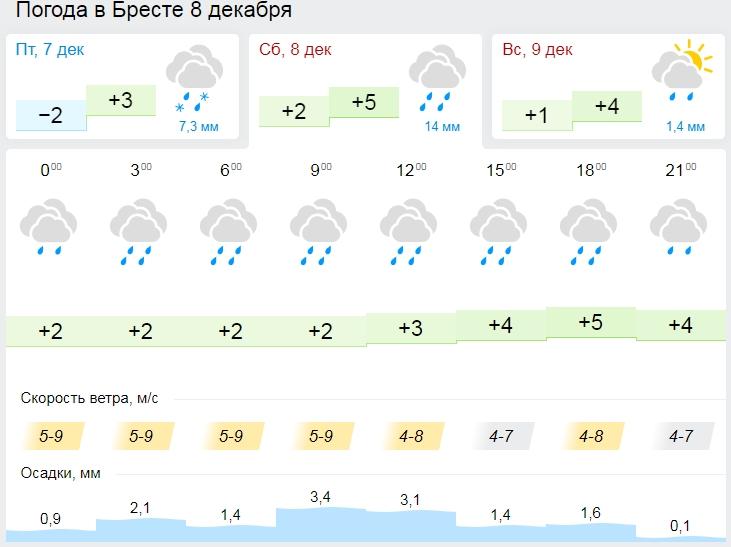 В пятницу над Брестом пройдёт фронтальный раздел - потеплеет от снега к дождю (будет плохо)