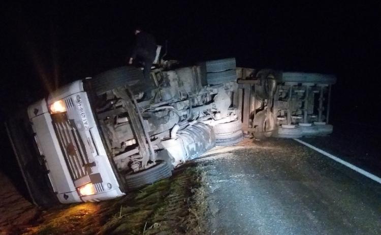 На М1 водитель грузовика перевернул автомобиль с зерном, но спас перебегавшее животное