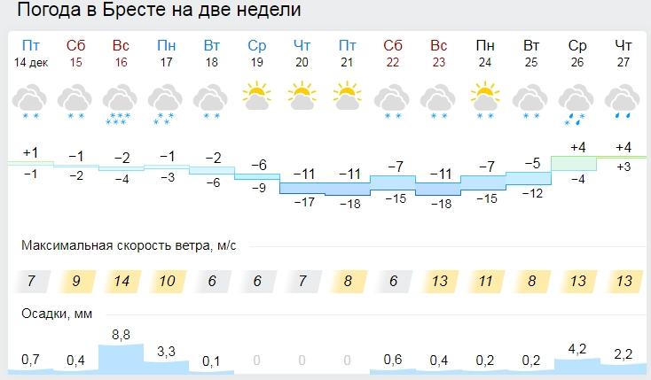 На 1 января 2019 года нам прогнозируют до +11 - почти лето!