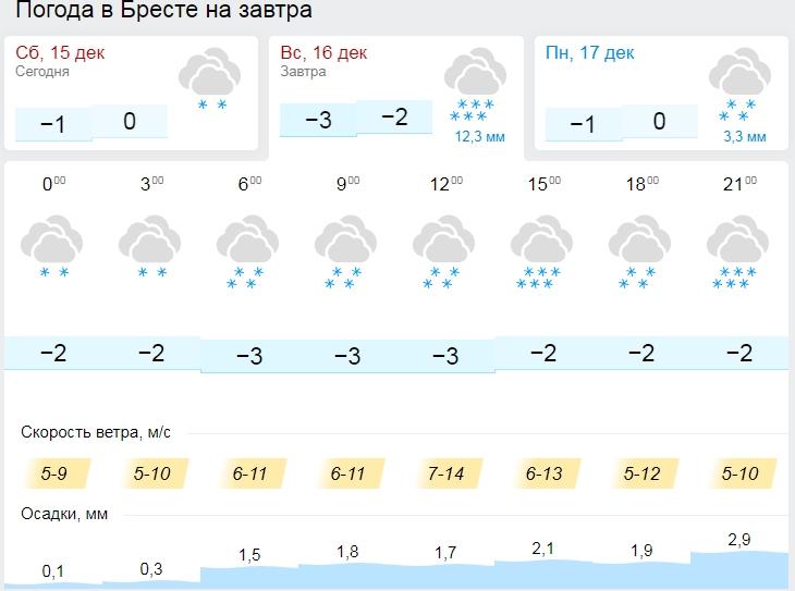 Сильный снег ожидается по западу Беларуси 16 декабря