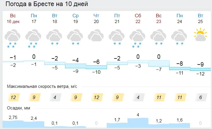 Какой будет погода в понедельник: гололедица, снегопад и метель. Но, похоже, не в Бресте
