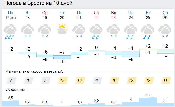 Снег, гололед и метель. Погода в Бресте на рабочую неделю