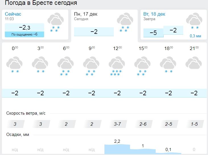 Прогноз для Бреста изменился - снег будет продолжаться весь день!