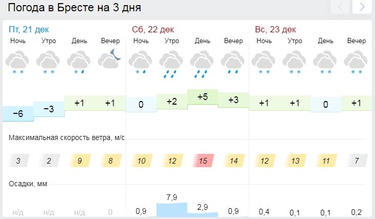 В субботу в Бресте будет +6°С, а в воскресенье — мокрый снег