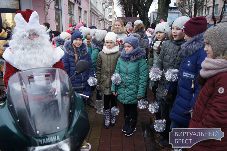 На пл. Ленина в Бресте открыли главную городскую Новогоднюю ёлку