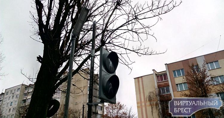 На перекрёстке ул. Папанина и Пушкинской в Бресте установили светофор