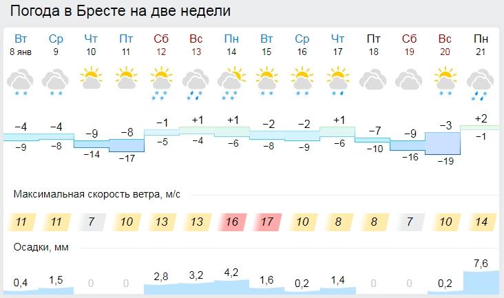 Какой будет погода в январе и ждать ли белорусам крещенских морозов