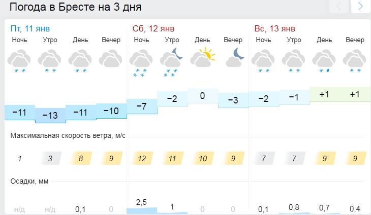 Снег, порывистый ветер и до -5°С ожидаются в Беларуси 12 января