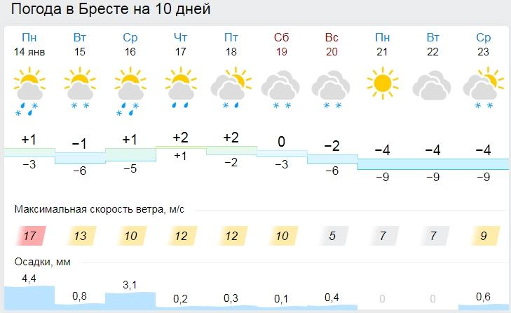 Снег, дожди и слякоть. На этой неделе в Бресте будет ненастно