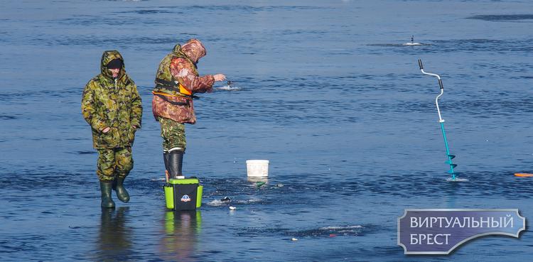 Идущие по воде... На Гребном канале рыбаки вовсю получают удовольствие