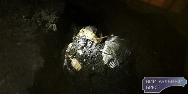 Контрабандные сигареты в вагоне с углем из Беларуси нашли поляки