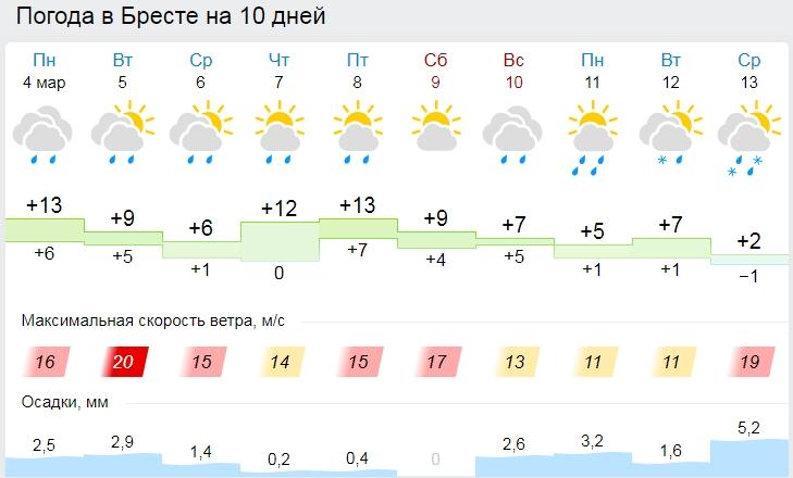 Как бы уже точно - весна! 8 марта в Бресте будет +15 °С