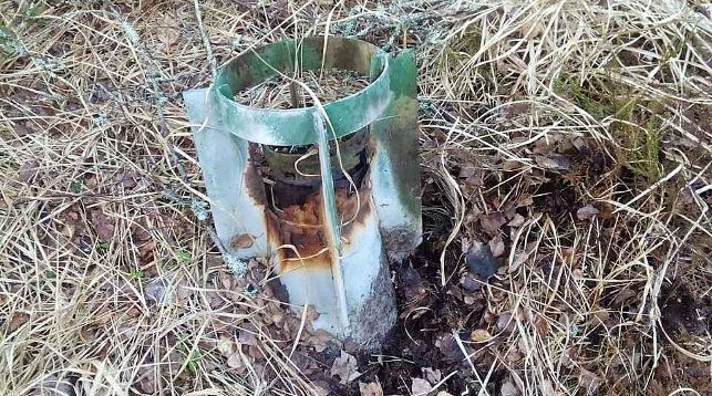 В Столинском районе на бывшем военном полигоне обнаружены авиаснаряды