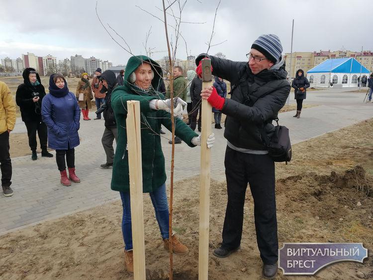 В Бресте журналисты, блогеры и медиа-активисты высадили аллею СМИ в парке Тысячелетия
