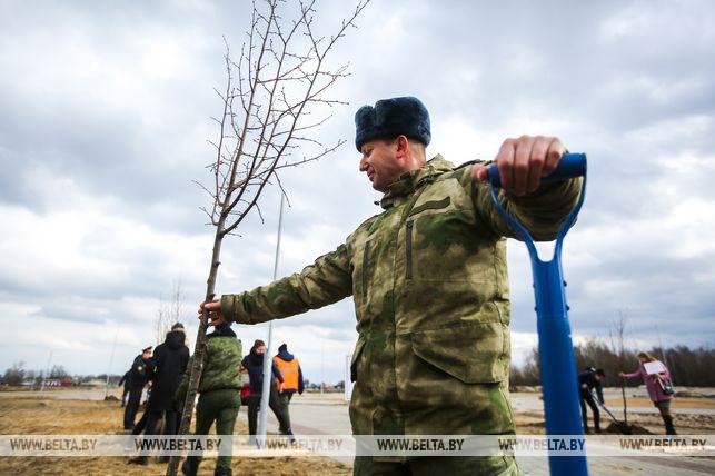 Семьи из Брестской области высадят во время акции около 500 деревьев