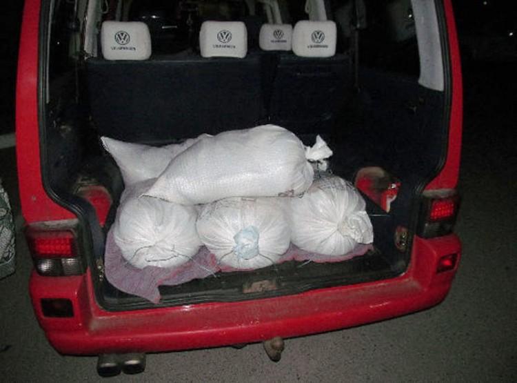 Сотрудниками милиции пресечена кража 500 килограмм рыбы