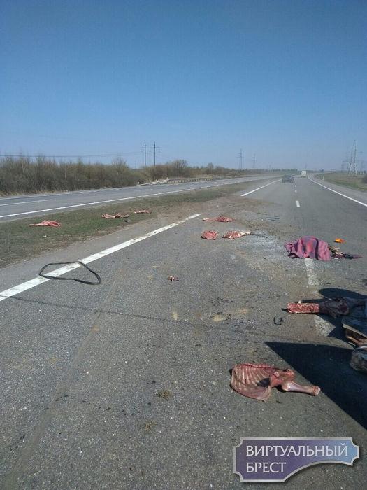 На трассе М1 под Барановичами — серьезная авария. Есть жертвы