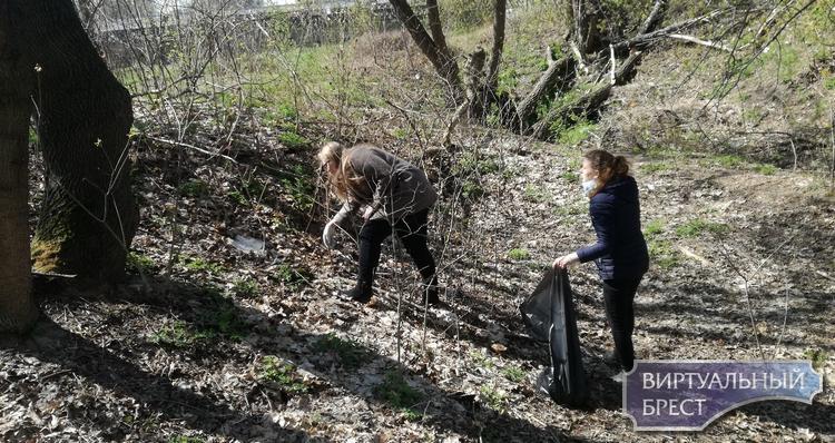 Студенты присоседились к экологической акции «Брест- территория чистоты и здоровья»
