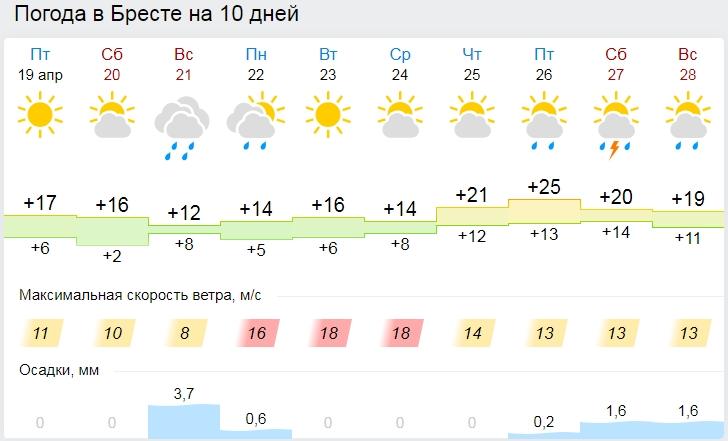 В субботу в Бресте будет до +16, а в воскресенье — дождь