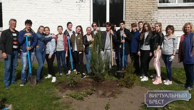 Семейный экологический праздник провели в ГУО «Средняя школа №3 г. Бреста»