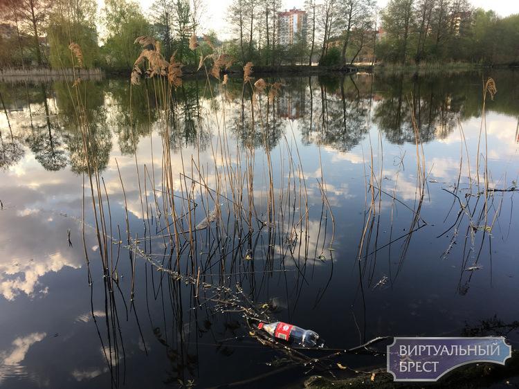 Готовиться к 2000-летию Бреста можно уже сейчас: начало положила акция «Чистая река»