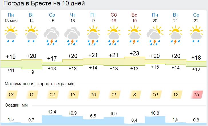 Дожди, грозы, порывистый ветер. Странная погода в Бресте на неделе
