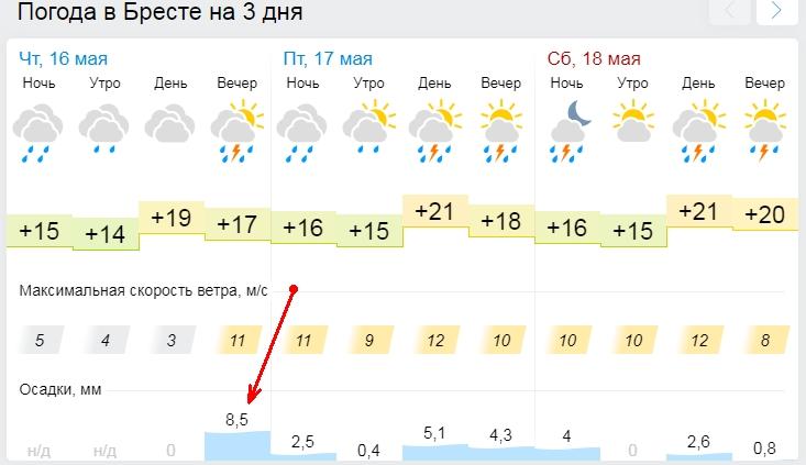Прогноз - неблагоприятный... Сильный дождь может начаться в Бресте уже этим вечером