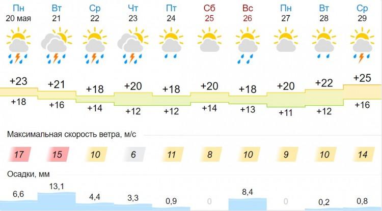 Тепло — а потом дождь с грозой. Погода в Бресте на неделе