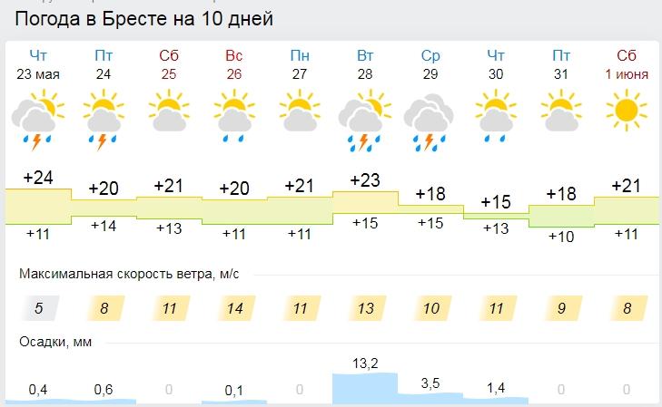 На пятницу объявлен желтый уровень: атмосферный фронт с Балтики несет дожди и грозы